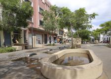 En combate al dengue se deben tomar en cuenta factores urbanos y geográficos
